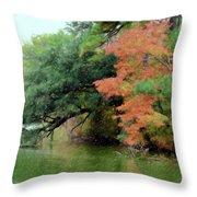 Fall Landscape Around The Lake 5 Throw Pillow