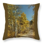 Fall Lane Throw Pillow