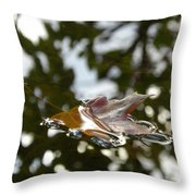Fall Leaf In Stream Throw Pillow