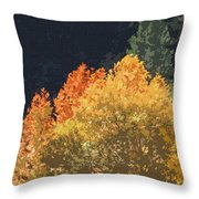 Fall Leave On The East Verde River Throw Pillow