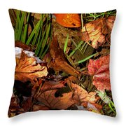 Fall Leaves 5 Throw Pillow