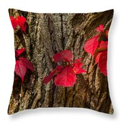 Fall Leaves Against Tree Trunk Throw Pillow