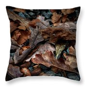 Fall Leaves And Acorns Throw Pillow