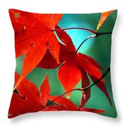 Fall Leaves In All Their Glory Throw Pillow
