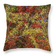 Fall Leaves In So Cal Throw Pillow