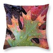 Fall Leaves I V Throw Pillow
