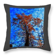 Fall Majesty Throw Pillow