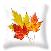 Fall Maple Leaves On White Throw Pillow