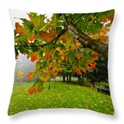 Fall Maple Tree In Foggy Park Throw Pillow