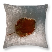 Fall Meets Winter Throw Pillow