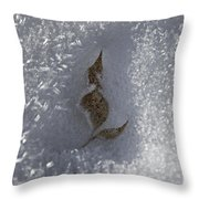 Fall Meets Winter V2 Throw Pillow