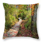 Fall Morning Throw Pillow by Bill Wakeley