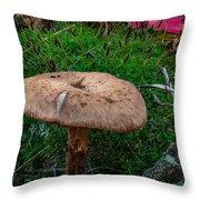 Fall Mushrooms Throw Pillow