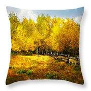 Fall Near Lake City Throw Pillow