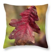 Fall Oak Leaf Throw Pillow
