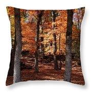 Fall On A Stump Throw Pillow