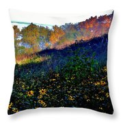 Fall On Garvin Heights Throw Pillow