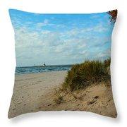 Fall On The Beach Throw Pillow