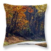 Fall On The Parkway Throw Pillow