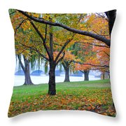 fall on the Potomac River Throw Pillow