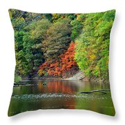 Fall Painting Throw Pillow by Frozen in Time Fine Art Photography