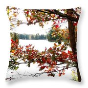 Fall Paints A Picture Throw Pillow