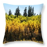 Fall Panorama Throw Pillow