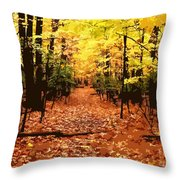Fall Path Throw Pillow