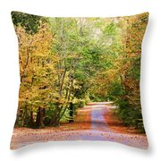 Fall Pathway Throw Pillow by Judy Vincent