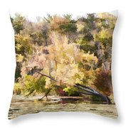 Fall Pond Throw Pillow