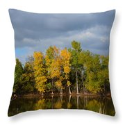 Fall Pond Reflection Throw Pillow