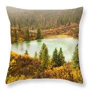 Fall Rain On Wilderness Lake Yukon T Canada Throw Pillow