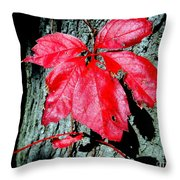 Fall Red Leaf Throw Pillow