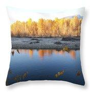 Fall Reflection 2 Throw Pillow