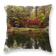Fall Reflection And Colors Throw Pillow