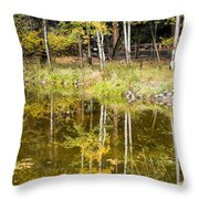 Fall Reflection In Yosemite 2 Throw Pillow