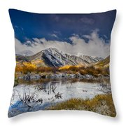 Fall Reflection Pond Throw Pillow