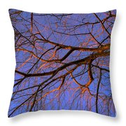 Fall Reflections By Diana Sainz Throw Pillow