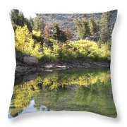 Fall Reflections Throw Pillow