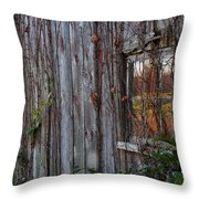 Fall Reflections On Weathered Glass Throw Pillow