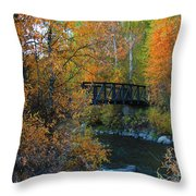 Fall River Throw Pillow by Dana Kern
