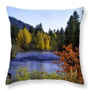 Fall River Throw Pillow