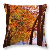 Fall River Nova Scotia Throw Pillow