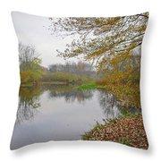 Fall River Park Throw Pillow