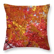 Fall Saint Louis 1 Throw Pillow