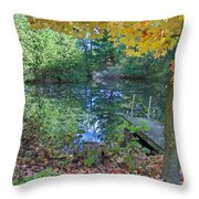 Fall Scene By Pond Throw Pillow