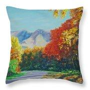Fall Scene - Mountain Drive Throw Pillow