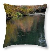 Fall Series 28 Throw Pillow