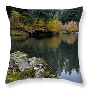 Fall Series 29 Throw Pillow