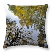 Fall Series 34 Throw Pillow